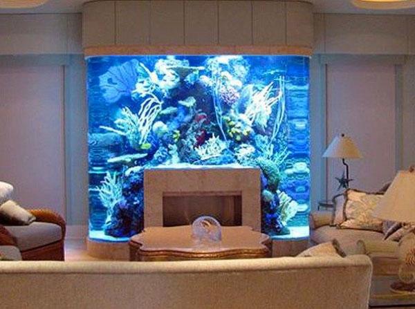Arredare con un acquario 15 acquari da arredo for Acquario da giardino