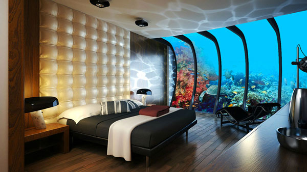 Camere Da Sogno Facebook : Camera acquario quando il sogno è realtà