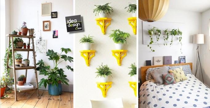Decorare con le piante 15 idee per decorare dentro casa for Decorare le case