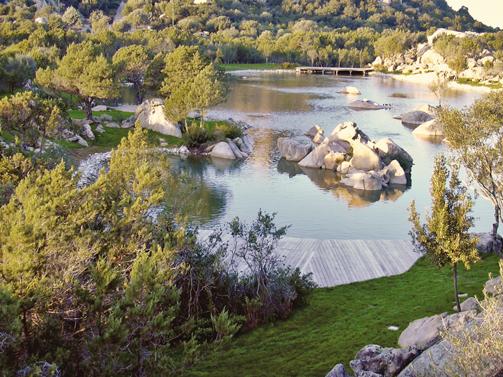piscine biodesign