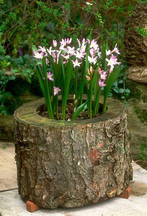 tronco fiore