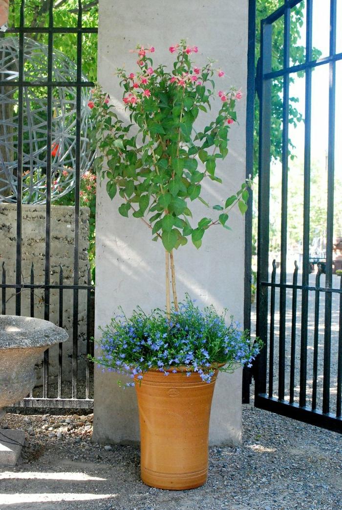 Idee Per Il Bagno : Vasi di fiori idee originali per illuminare il tuo