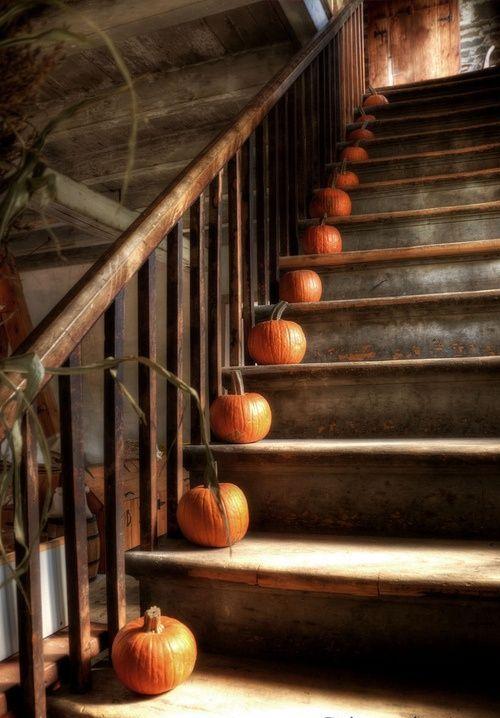 Decorazione scale autunno 18