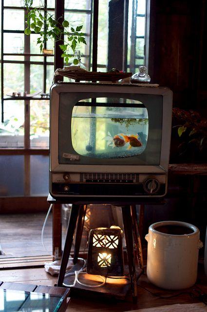 Riciclo creativo televisione 2