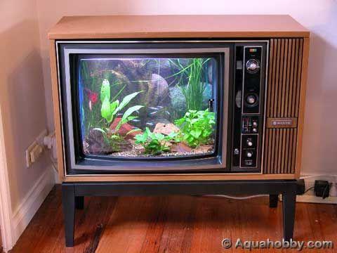 Riciclo creativo televisione 5