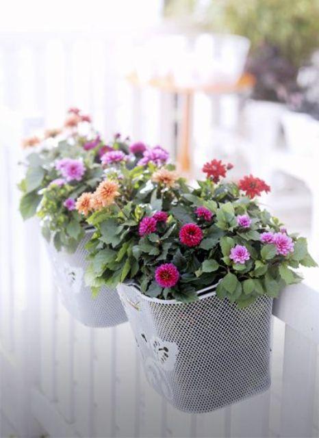 idee fiori per il balcone