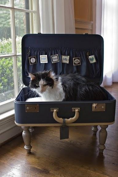 cuccia valigia 14