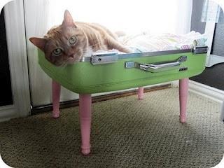 cuccia valigia 6