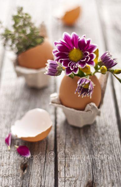 riciclare gusci delle uova 20
