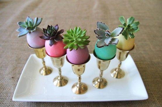 riciclare gusci delle uova 8