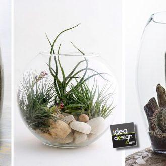 vaso-mini-giardino