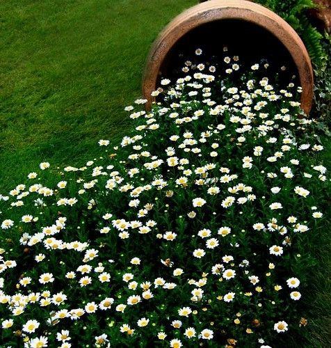 Vaso creativo nel giardino! Ecco 20 idee a cui ispirarsi...