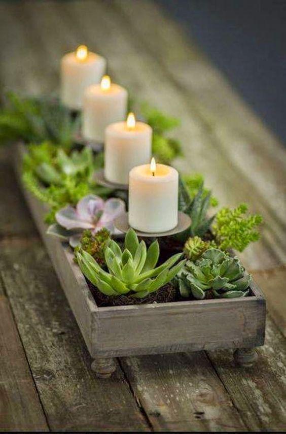 decorazione creativa con piante grasse 19