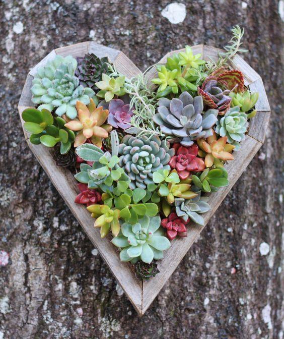 decorazioni con le piante grasse! Ecco 20 splendide idee...