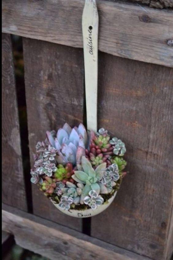 idee decorazioni piante 2