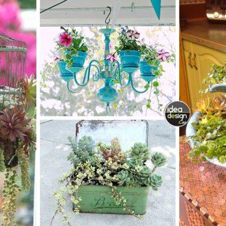 idee-decorazioni-piante2