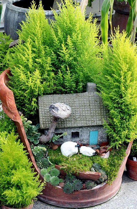 Riciclare i vasi rotti in fantastici giardini in miniatura - Giardini fantastici ...