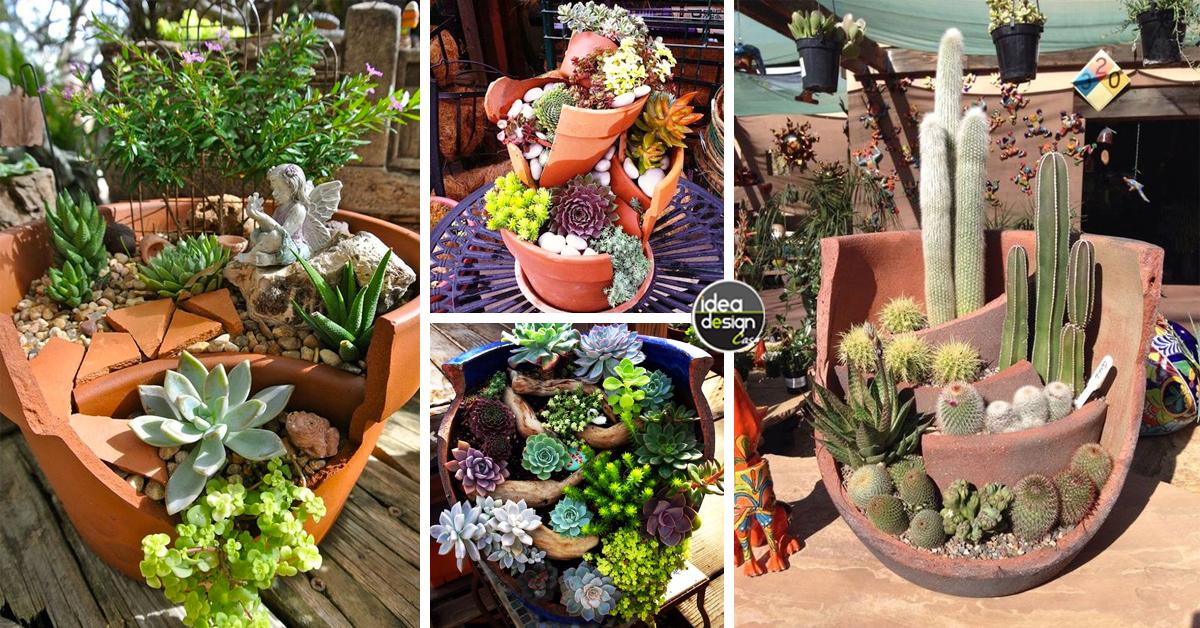 Riciclare i vasi rotti in fantastici giardini in miniatura for Vasi piante grasse