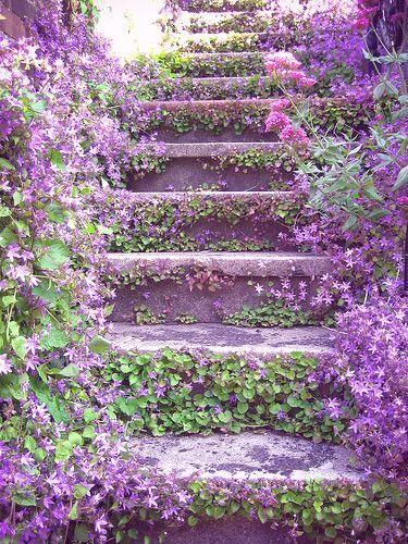 decorar las escaleras de exterior con flores