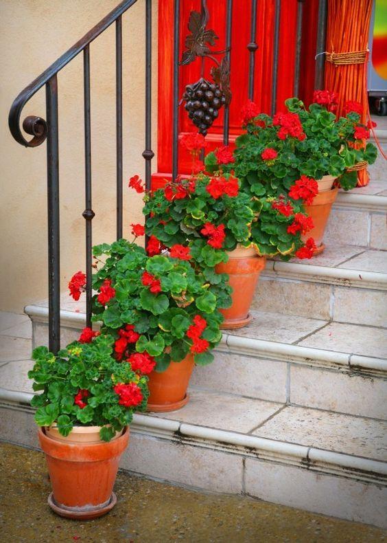 Decorar las escaleras de exterior con flores 20 ideas for Decorar rincones de escaleras