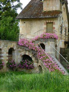 scale con i fiori 14