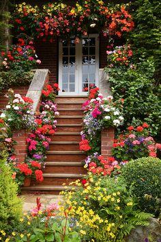 scale con i fiori 19