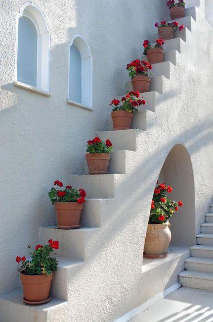 scale con i fiori 20