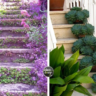scale-con-i-fiori