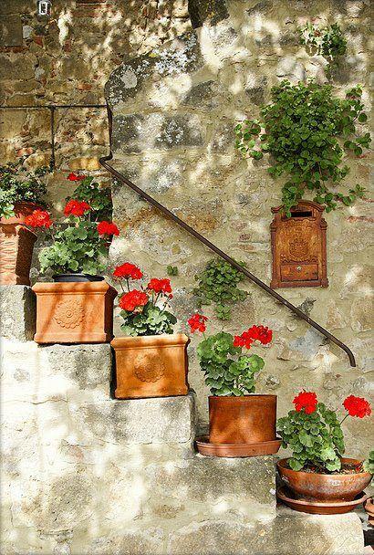 scale con i fiori 5