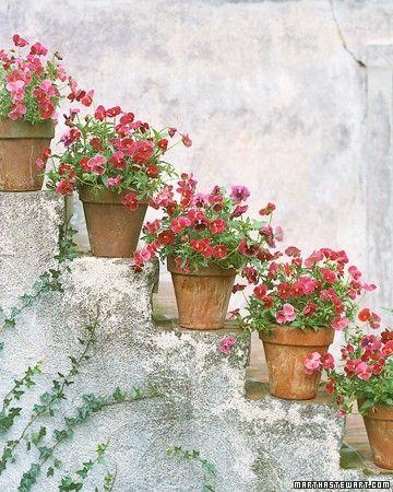 Decorare le scale esterne con i fiori