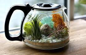 vaso originale riciclo 1