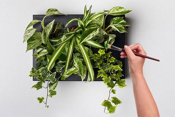 Quadri vegetali fai da te 16 idee per decorare casa for Cornici quadri fai da te