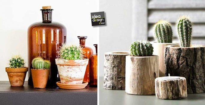 Idee Creative Casa : Piccoli cactus per decorare casa ecco idee creative