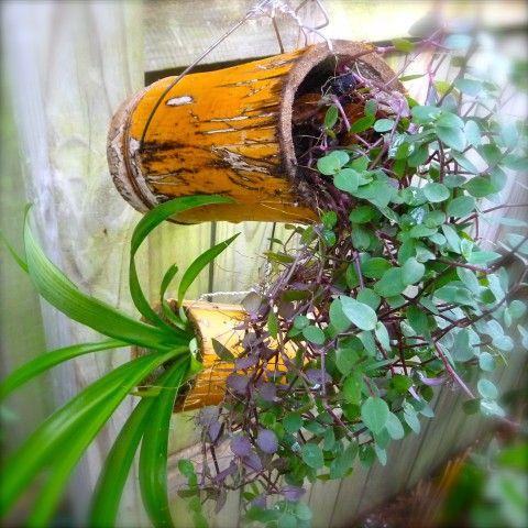 fai da te con bambu 7