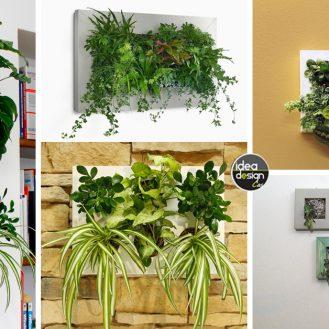 quadri-vegetali