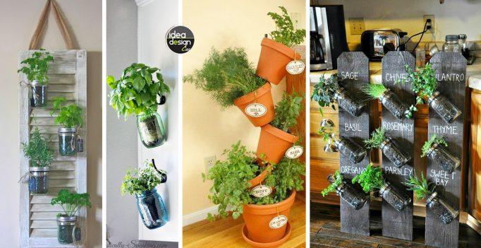 Angolo erbe aromatiche dentro casa 20 idee creative - Erbe aromatiche in casa ...