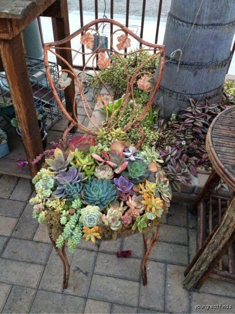 decorazioni originali con piante 16