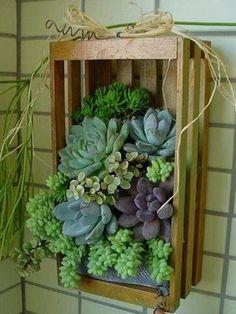 decorazioni originali con piante 17