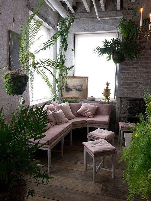 angolo-piante-casa-17