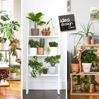 idee-decorazione-piante