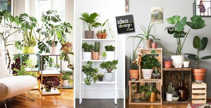 Piante In Casa Idee : Creare un angolo verde dentro casa ecco idee
