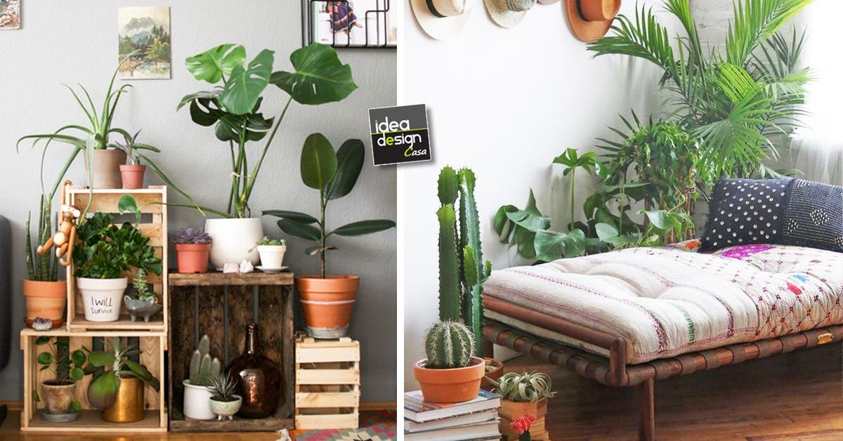 Creare un angolo verde dentro casa ecco 20 idee for Idee design casa