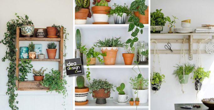 Decoration Plante Salon