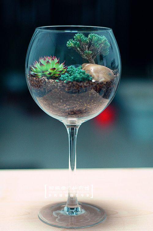 Mini terrario fai da te