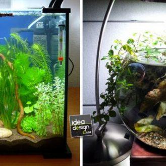 decorazioni-creative-piccolo-acquario
