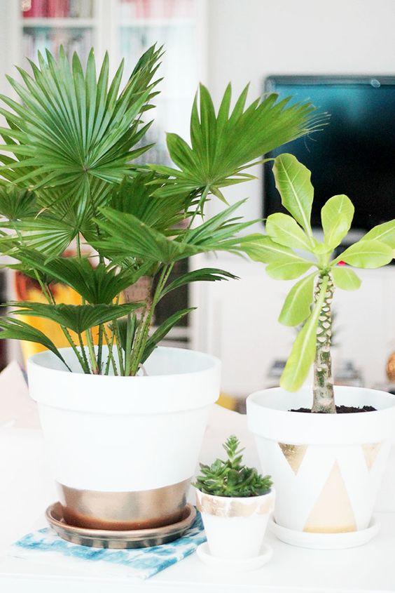 Decorare creativamente un vaso in terracotta 20 idee for Decorazione vasi