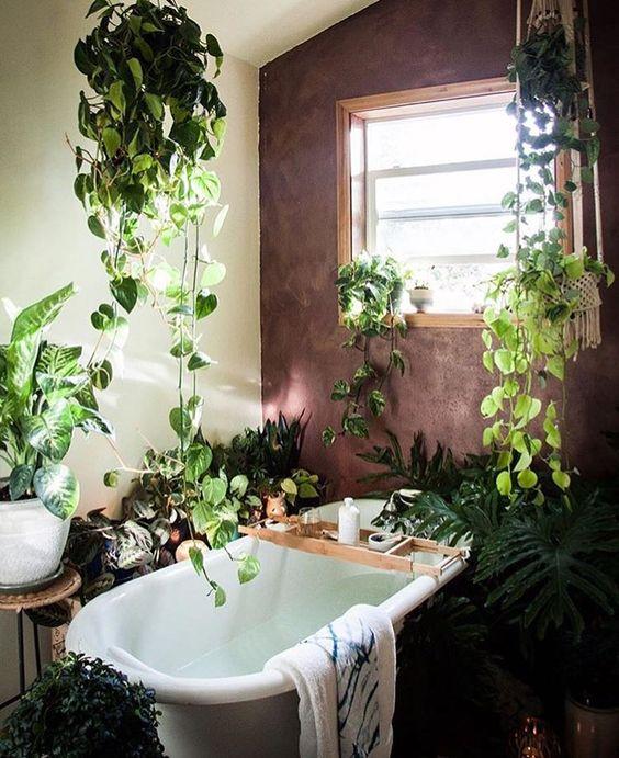 Decorare il bagno con le piante ecco 20 idee da cui trarre ispirazione - Piante per il bagno ...