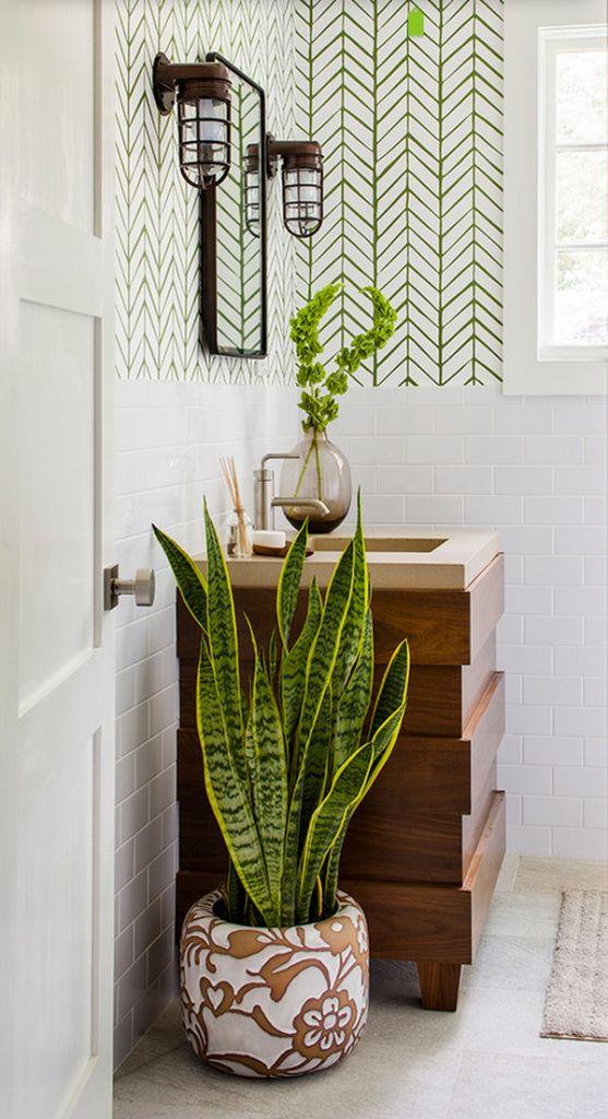 Decorare il bagno con le piante ecco 20 idee da cui - Piante da bagno ...