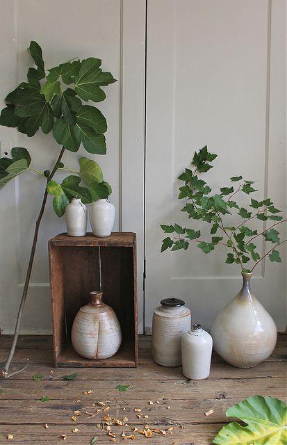 Vecchia cassetta di legno decorativa con vasi e fiori