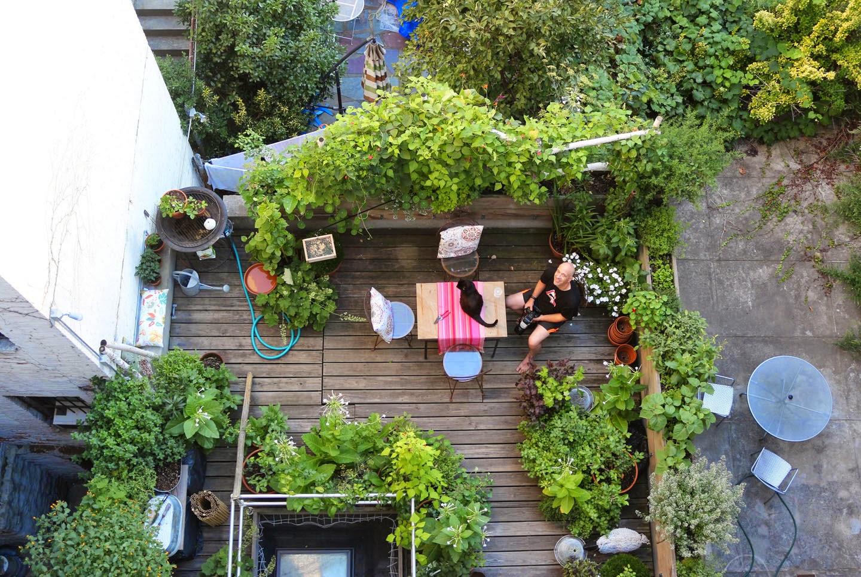 Organizzare un orto sul balcone